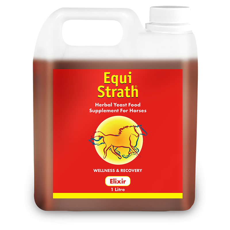 Equi-Strath 1L Jerry Can